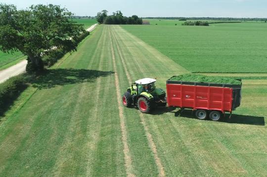 Grassy field chlorophyll harvest